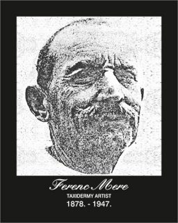 ferenc mere